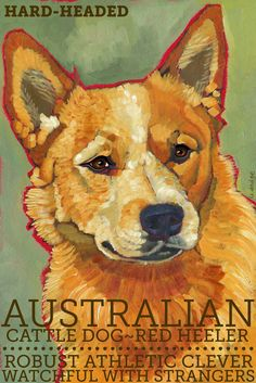 Australian Cattle Dog No. 2  magnets coasters and by ursuladodge, $6.00
