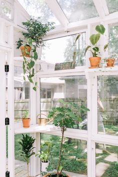 How to Build a Greenhouse from Old Windows Greenhouse Kitchen, Outdoor Greenhouse, Backyard Greenhouse, Small Greenhouse, Greenhouse Plans, Pallet Greenhouse, Greenhouse Wedding, Recycled Windows, Old Windows
