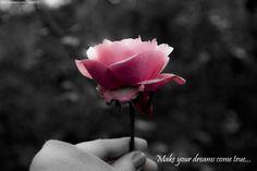 #dreams #life