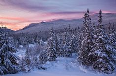 ***Winter in the Notch (Vermont) by Harry Lichtman on 500px