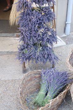 lila lavendel