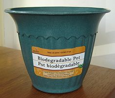 "Biodegradable ""plastic"" Planter Pot, colors will vary"