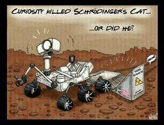 Space time cat joke
