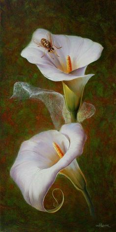 Cala lilies with bee Art Floral, Deco Floral, Watercolor Flowers, Watercolor Paintings, China Painting, Calla Lily, Cala Lilies, Botanical Illustration, Beautiful Paintings