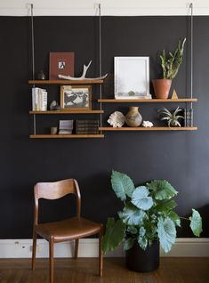 Carlysle Manufacturing Company shelving systems hook onto picture rail. Perfect for San Francisco flats and rentals with trim or moulding.