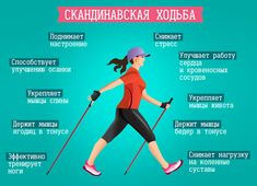 Trekking Quotes, Hiking Quotes, Nordic Walking, Sport Body, Cross Training, Infographic, Health Fitness, Exercise, Sports