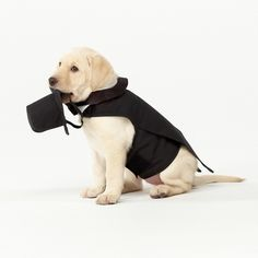 Don't forget man's best friend when you are planning your wedding. This darling doggie tuxedo is fully lined and well tailored. #dog #wedding
