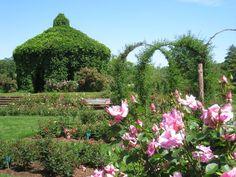 Elizabeth Park, Hartford, CT - rose garden