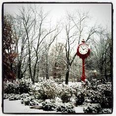 Snowy Day - at the Arboritum  - Indiana University, Bloomington Indiana