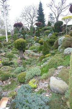 Jan Luebbers It's hard to believe that it's over ten years since I took these pictures of a spectacular garden in the Netherlands. I wa...
