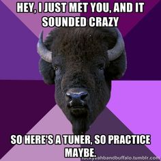 Hey, I just met you, and it sounded crazy...so here's a tuner, so practice maybe.