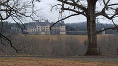 The view from our office window this week. The Biltmore House.