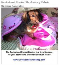 dachshund pocket blanket