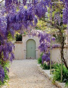 English Garden, famous, Rou Estate, corfu gardens - Wisteria, my favourite