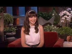 Zooey's Adorable Rescue Dogs