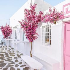 Flowers make everything better Náousa, Kikladhes, Greece #naousa #paros island #greece