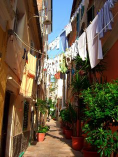 https://flic.kr/p/59W46W | Alleyway in Corfu town | Narrow paved lane with hanging clothes and flower pots. Corfu town, Corfu Island, Ionian Sea, Greece