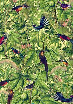 tropical print Тропический принт