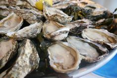 Huiterie Regis: Absolutely stunning oysters.