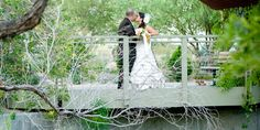 The Springs Preserve is not that far from your apartment, and they host weddings!