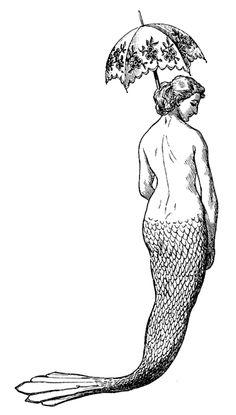 Octopus Tattoos, Mermaid Tattoos, Vintage Mermaid Tattoo, Real Mermaids, Mermaids And Mermen, Fantasy Mermaids, Mermaid Illustration, Illustration Art, Mermaid Fairy