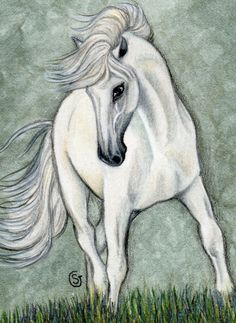 Horse Andalusian Stallion ACEO Watercolor Painting Original ART by Sherry Goeben  #Realism