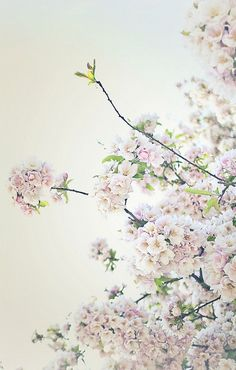 Daily Dose of Fine Art « Evoking You|Inspiration for your photography