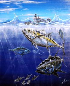 Yellow-Fin-Tuna-Mozambique-Fish-Painting.jpg (529×650)