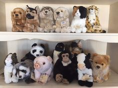 Webkinz Stuffed Animals - This Is How Much Your Favorite Childhood Toys Are Worth Now - Photos