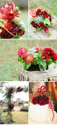Holiday colors with succulents. the middle picture is a great centerpiece--not overly Christmas but rich in tones.