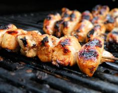 Vittles and Bits: Honey Garlic Chicken Kabob Marinade