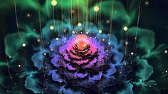 Powerful Healing Theta Meditation ~ 528Hz Transformation Miracles and DNA Repair  Holistic Diva rec