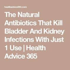 The Natural Antibiotics That Kill Bladder And Kidney Infections With Just 1 Use | Health Advice 365