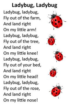 ladybug songs for preschoolers Circle Time Songs, Song Time, Kids Poems, Children Songs, Art Children, Finger Plays, Preschool Songs, Music And Movement, Childhood Education