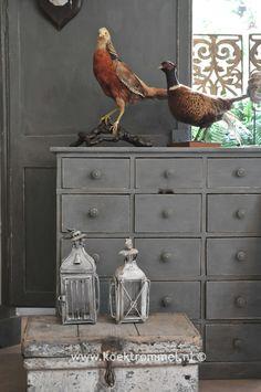 Franse ladenkast met oud kistje en vogels