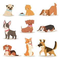 Cute funny cartoon dogs vector puppy pet characters different breads doggy illustration. Furry human friends home animals Cute Funny Cartoons, Funny Cartoon Characters, Cartoon Cartoon, Vector Characters, Cartoon Images, Illustration Mignonne, Dog Illustration, Character Illustration, Illustration Artists