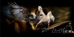 http://www.nvtn.org David Munoz~Prophetic Art