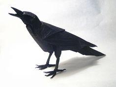 Brian Chan. Crow