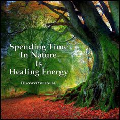 Healing in Nature...