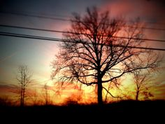 "Day Fourteen: ""Good Morning Blue Monday"""