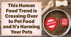 These words may be trendy, but they're also misleading and likely to lead your pet to inferior health.