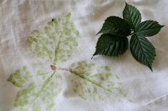 Hapa-Zome -- a technique from India Flint for dyeing textiles by hammering leaves or flowers on to cloth. Use Florida local plants. How To Dye Fabric, Fabric Art, Fabric Crafts, Diy Crafts, Shibori, Leaf Prints, Floral Prints, Natural Dye Fabric, Natural Dyeing