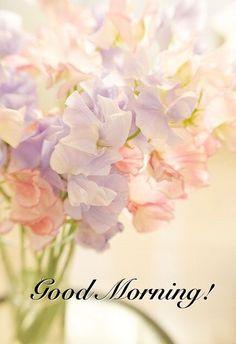 Good Morning ...♥♥...                                                                                                                                                                                 More