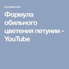 Формула обильного цветения петунии - YouTube