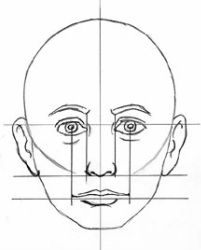 PowerPoint on Facial Proportion crazy detailed