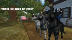 Star Stable had an IG competition and my 3 friends got one horse each. After that we lined up and I just took a photo. (I did a really bad job whiting out names)