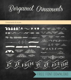 DIY Bergamot Ornaments Free Font from Bettina's Blog.Whenever I see these types of flourishes I want to recreate the Harry Potter photo album from the movie. For more really unique fonts go here.