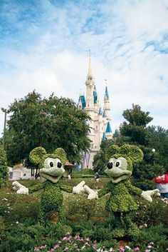 Mickey and Minnie are two of more than 200 topiary sculptures in Disney World. (Stephanie Adams) From: The Indispensable Guide to Disney World.