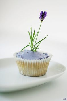 Lavender cupcakes~ click translate for recipes when you go to site.