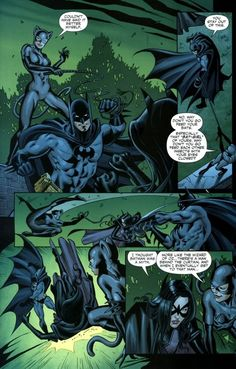 Batman and Catwoman vs. The Huntress